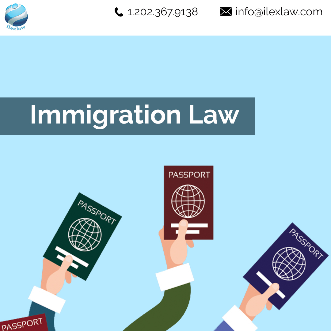 ilex law immigration services usa
